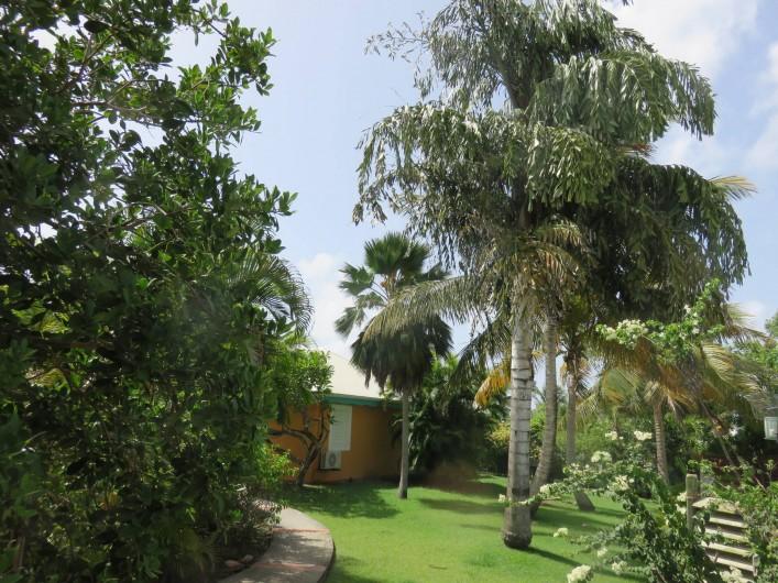 Location de vacances - Gîte à Saint-François - une partie du jardin tropical