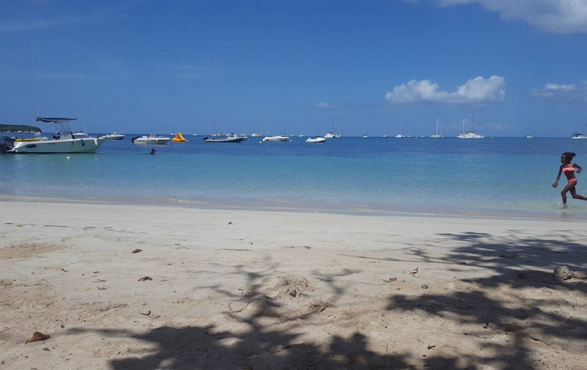 Location de vacances - Villa à Sainte-Anne - Plage de la Pointe du Marin