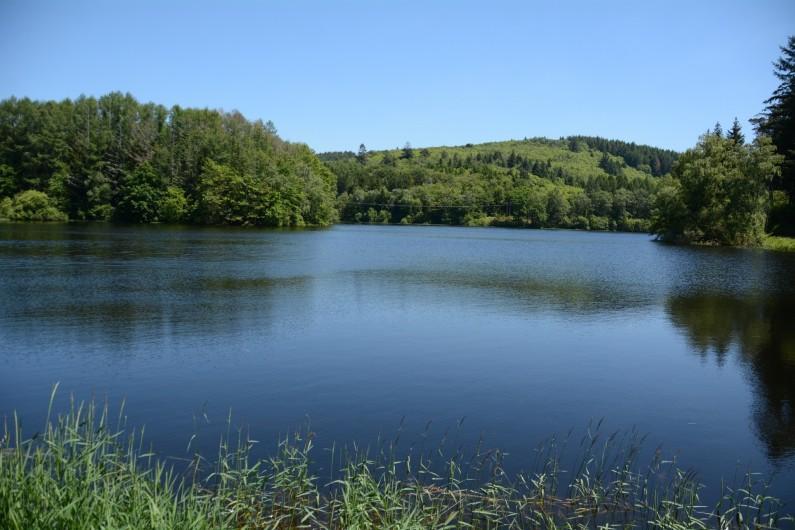 Location de vacances - Gîte à Ambazac - le lac ce la Crouzillle en contrebas du village