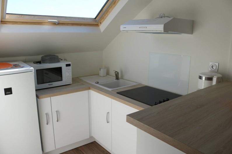 Location de vacances - Studio à Aix-les-Bains - la cuisine équipée avec micro-onde grill