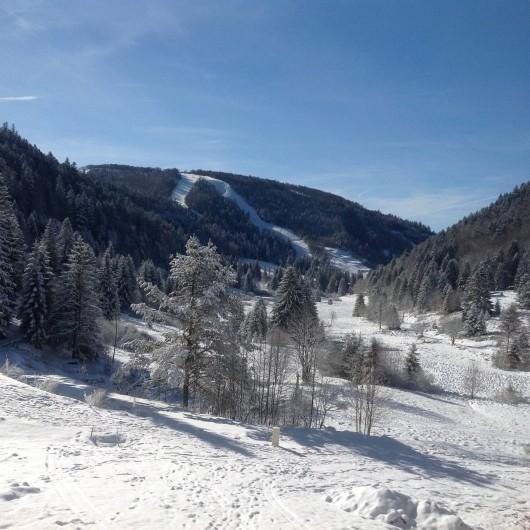 Location de vacances - Chalet à La Bresse - Une vue sur les pistes de skis  de la Vologne