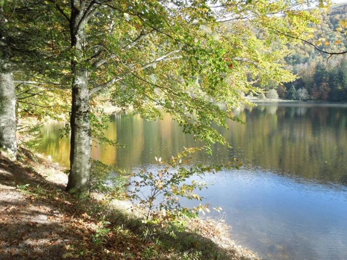 Location de vacances - Chalet à La Bresse - Lac des corbeaux