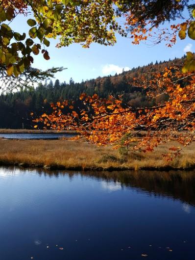 Location de vacances - Chalet à La Bresse - lac de lispach