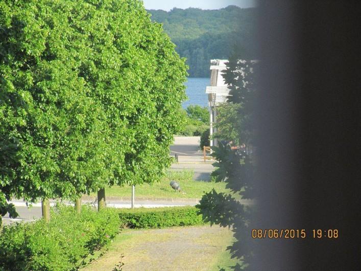 Location de vacances - Bungalow - Mobilhome à Froidchapelle - vue