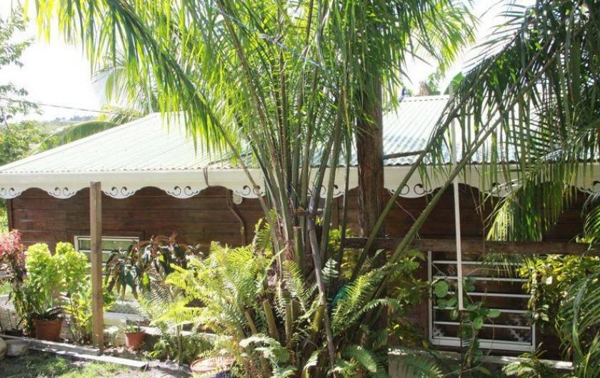 Location de vacances - Bungalow - Mobilhome à Rivière-Salée - Arrière plant du Bungalow côté jardin