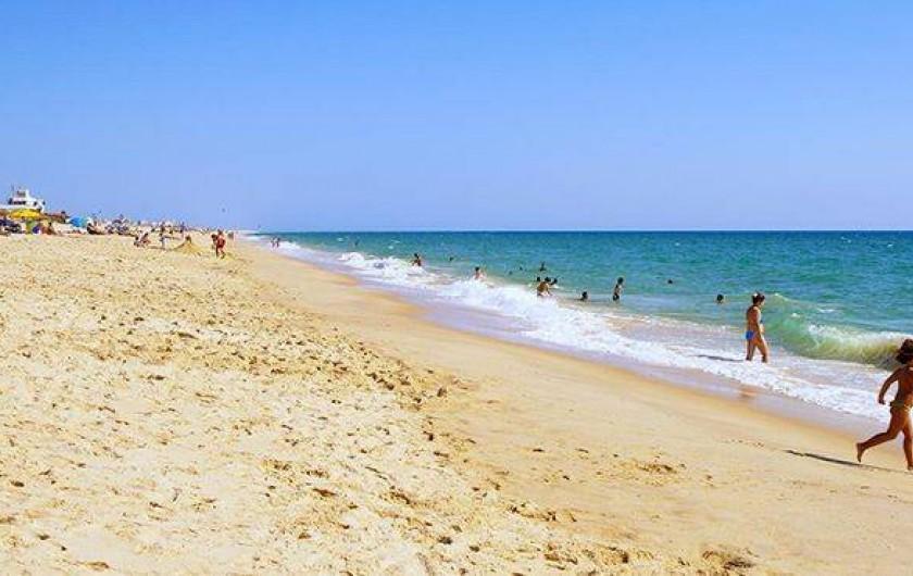 Location de vacances - Appartement à Faro - plage de île de Faro