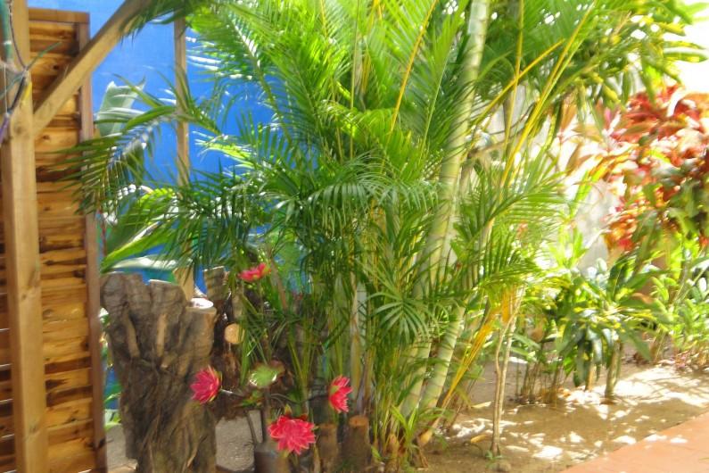 Location de vacances - Studio à Les Trois-Îlets