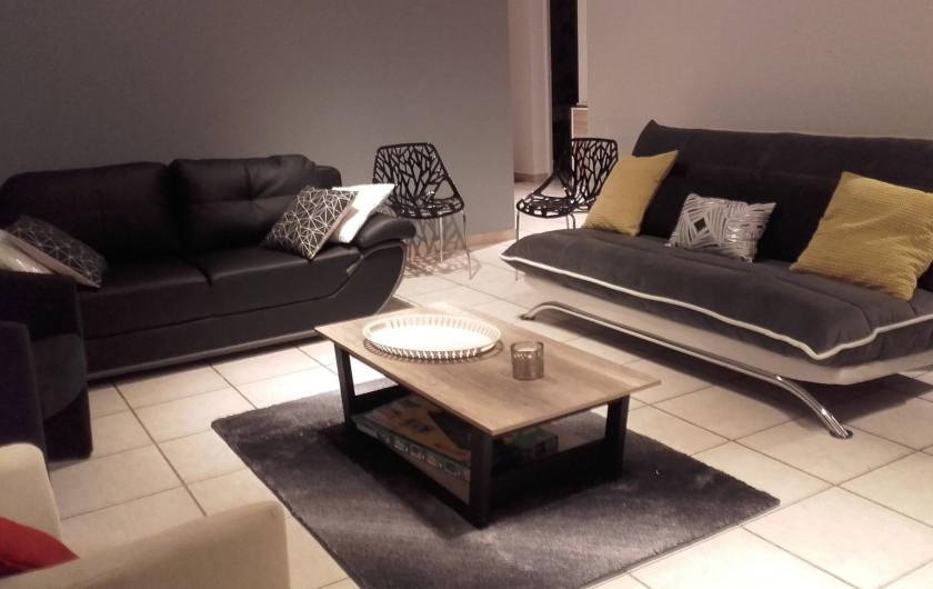 Location de vacances - Appartement à Loisy-sur-Marne - salon et ses canapés