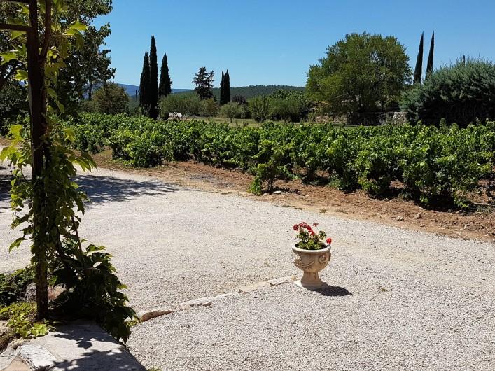 Location de vacances - Mas à Lorgues - Jardin vue côté vignes