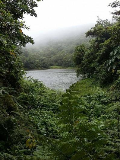 Location de vacances - Bungalow - Mobilhome à Capesterre Belle Eau - as de pic