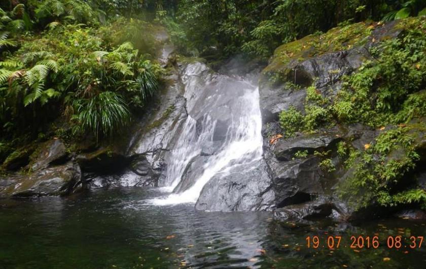 Location de vacances - Bungalow - Mobilhome à Capesterre Belle Eau