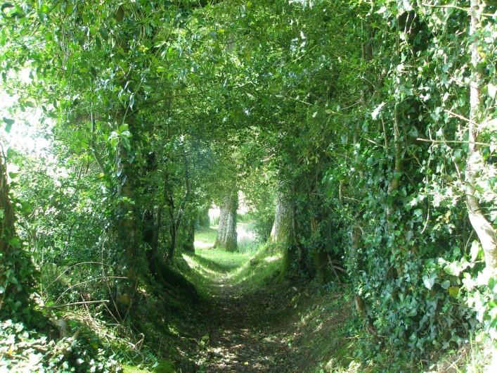 Location de vacances - Gîte à Lacam-d'Ourcet - Circuit des chemins creux et châtaigniers.