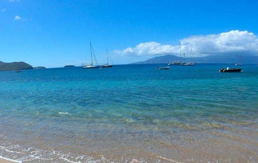 Location de vacances - Hôtel - Auberge à Terre-de-Haut - Votre plage privative !!