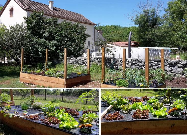 Location de vacances - Villa à Cahors - Votre Jardin Bio à votre disposition. Salades, tomates, fraises, basilic ...