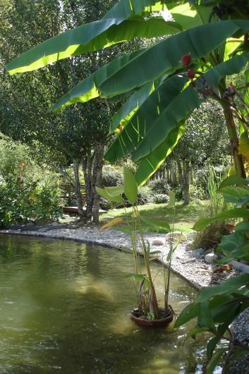 Location de vacances - Gîte à Meilhan-sur-Garonne - Bassin