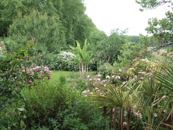 Location de vacances - Gîte à Meilhan-sur-Garonne - Vue sur le Jardin