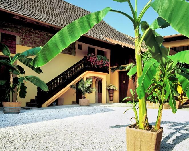 Location de vacances - Gîte à Orschwiller - Cour