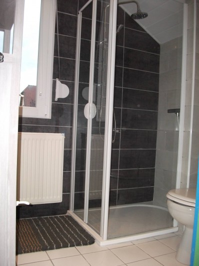 Location de vacances - Appartement à Berrwiller - salle d'eau avec wc