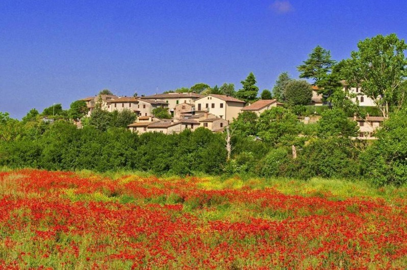 Location de vacances - Appartement à Monteriggioni - LE VILLAGE DE SCARNA A 300 METRES