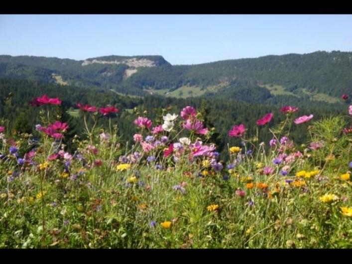 Location de vacances - Studio à Les Rousses - Vue de la terrasse