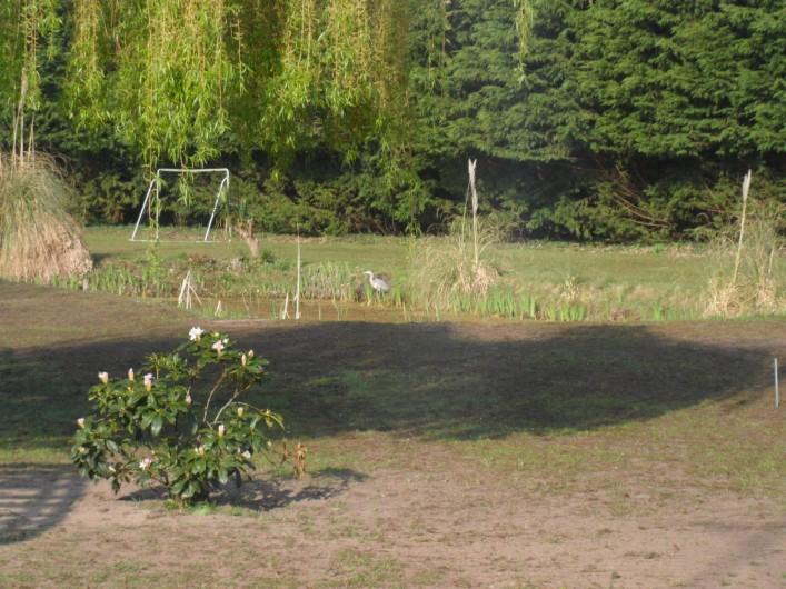 Location de vacances - Gîte à Merlimont - Jardin