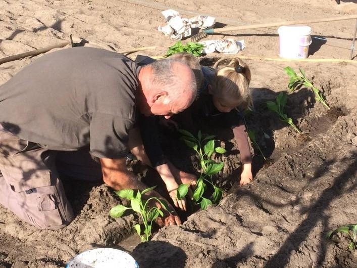 Location de vacances - Gîte à Lue - une petite leçon de jardinage...