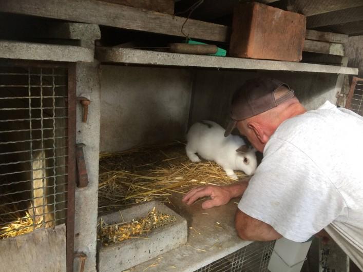 Location de vacances - Gîte à Lue - les animaux sont rois ! ils sont cajolés...