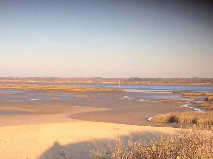 Location de vacances - Gîte à Lue - Embouchure de la Leyre, Bassin d'Arcachon, le Teich, une belle promenade à pied