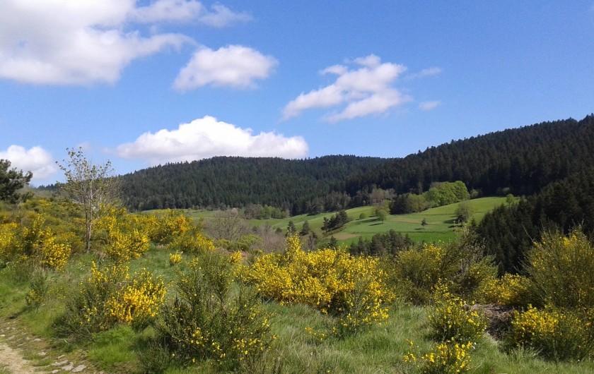 Location de vacances - Chalet à Riotord - Chemins de randonnée à proximité