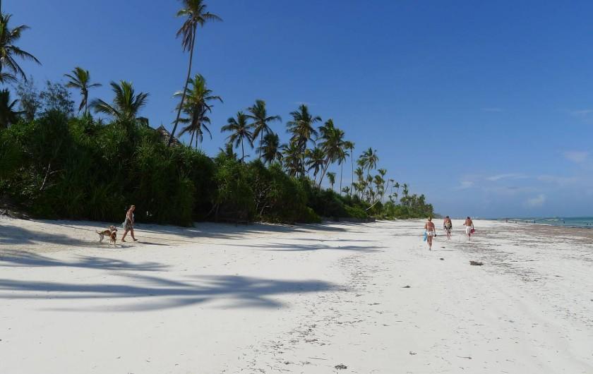 Location de vacances - Villa à Zanzibar - La plage publique devant la villa .... personne ...vrai coin de paradis !!!