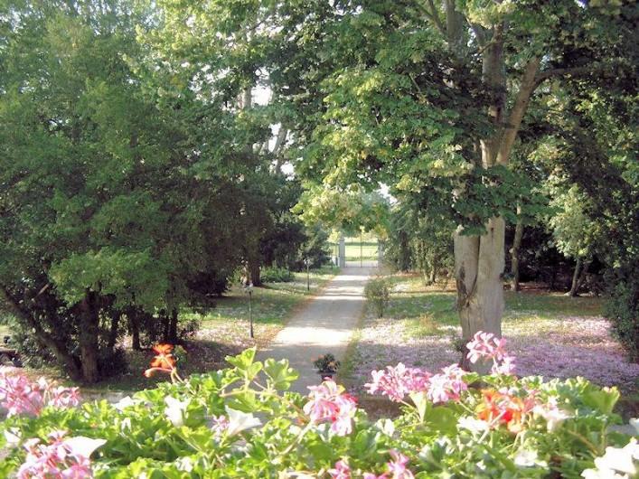 Location de vacances - Chambre d'hôtes à Juillé - allée