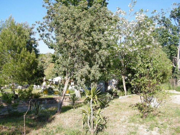 Location de vacances - Villa à Calvi - Environnement