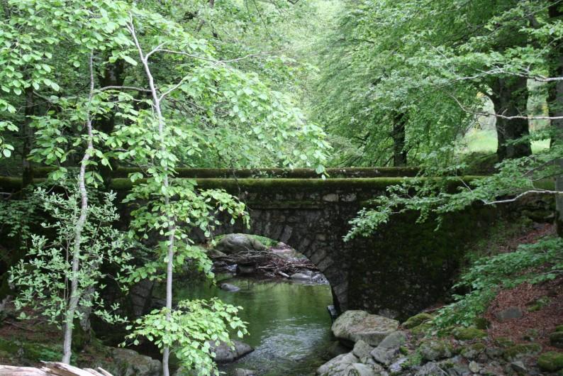 Location de vacances - Chambre d'hôtes à Meyrueis - Balade du pont de la Brèze