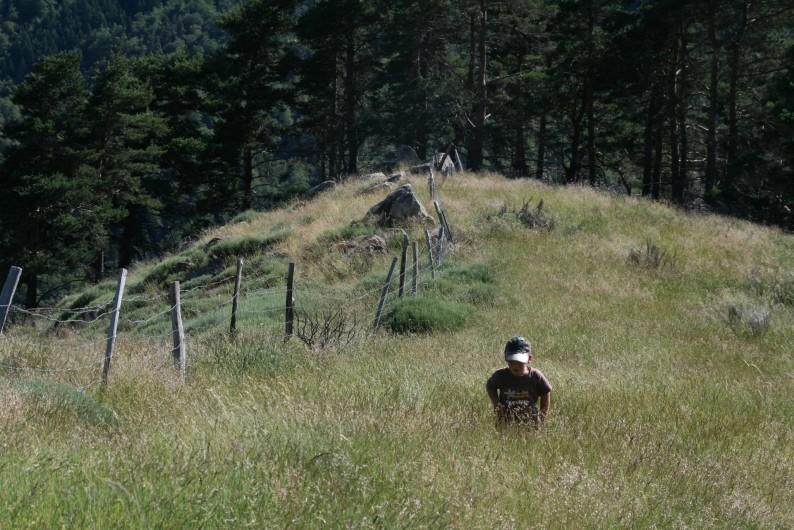 Location de vacances - Chambre d'hôtes à Meyrueis - Pleine nature pour petit et grand