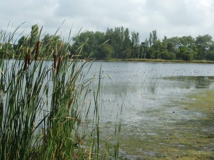 Location de vacances - Bungalow - Mobilhome à Kervoyal - lac