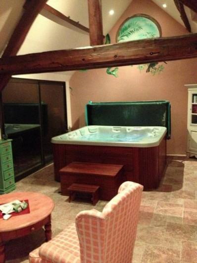 Location de vacances - Gîte à Auxerre - SPA
