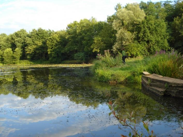 Location de vacances - Tipi à Saint-Vincent-en-Bresse - Les étangs  et peut-être prévoir une journée de pêche...