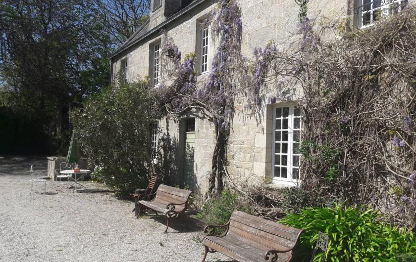 Location de vacances - Château - Manoir à Loctudy - sa glycine