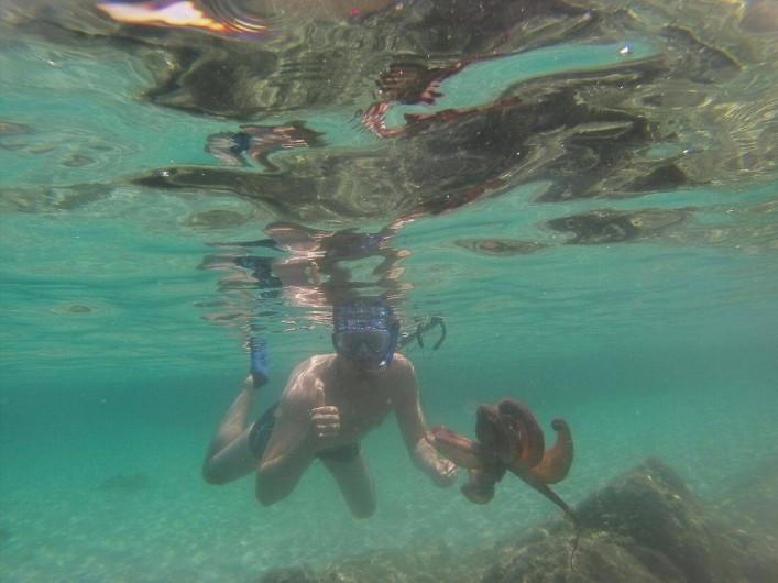 Location de vacances - Villa à Sainte-Lucie de Porto-Vecchio - Activité plongée & pêche harpon