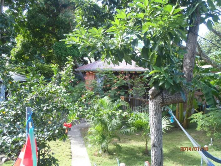 Location de vacances - Gîte à Terre-de-Haut - Deux gîtes dans le jardin - Gîte Orange et Gîte Rouge