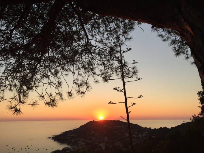 Location de vacances - Appartement à Tiuccia - Vue de la Résidence Coucher du soleil
