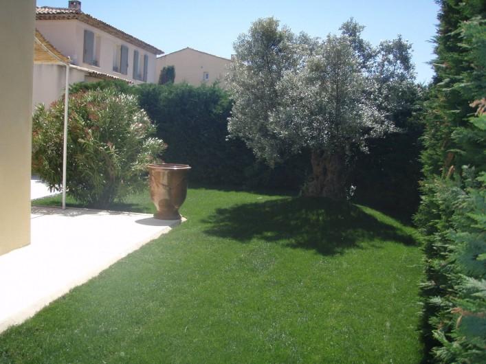 Location de vacances - Villa à Aix-en-Provence - Vue du jardin côté entrée (= Ouest) avec un olivier centenaire