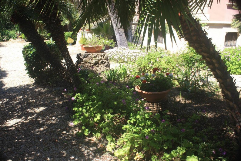 Location de vacances - Appartement à Santa Marinella - le jardin