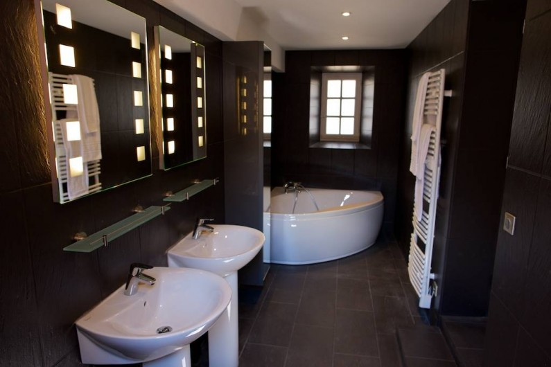 Location de vacances - Gîte à Chambord - Gîte Salamandre - salle de bain