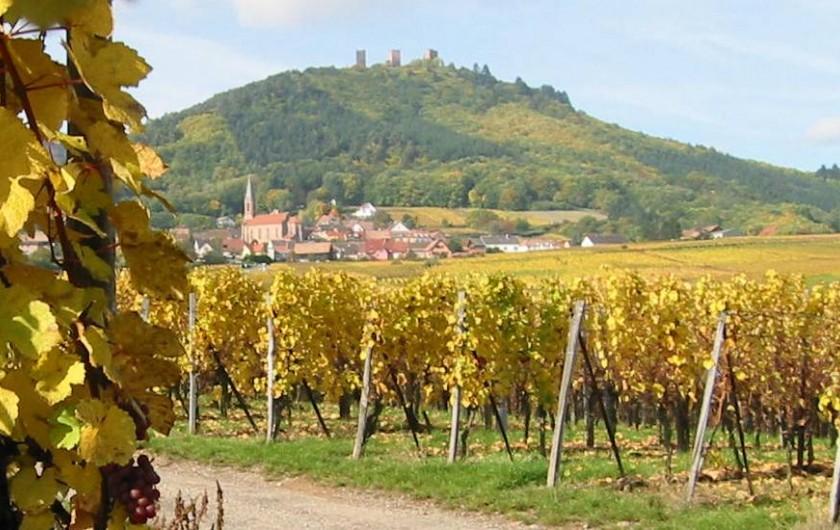 Location de vacances - Hôtel - Auberge à Husseren-les-Châteaux - entre vignes et forêt