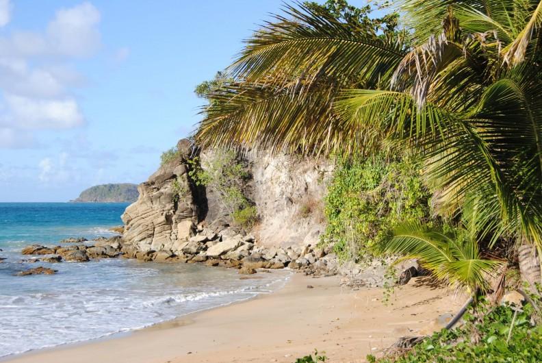 Location de vacances - Gîte à Deshaies - l'extrémité droite de la plage de rifflet  à 1,3 km du gîte