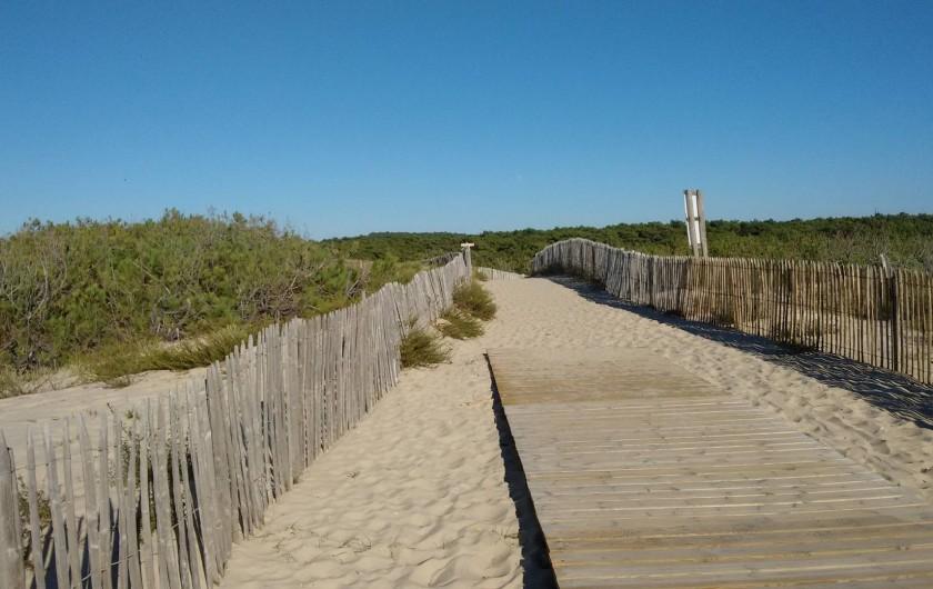 Location de vacances - Villa à Hourtin - Retour vers le parking forestier à Hourtin-plage