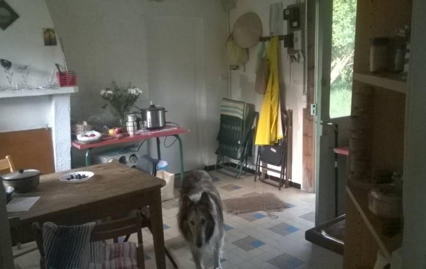 Location de vacances - Villa à Hourtin - la cuisine