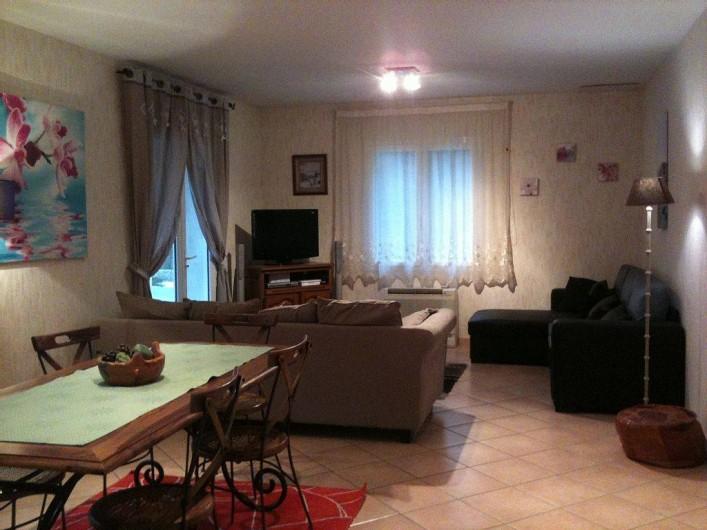 Location de vacances - Villa à Lamanon - le salon avec canapé lit deux place et une place
