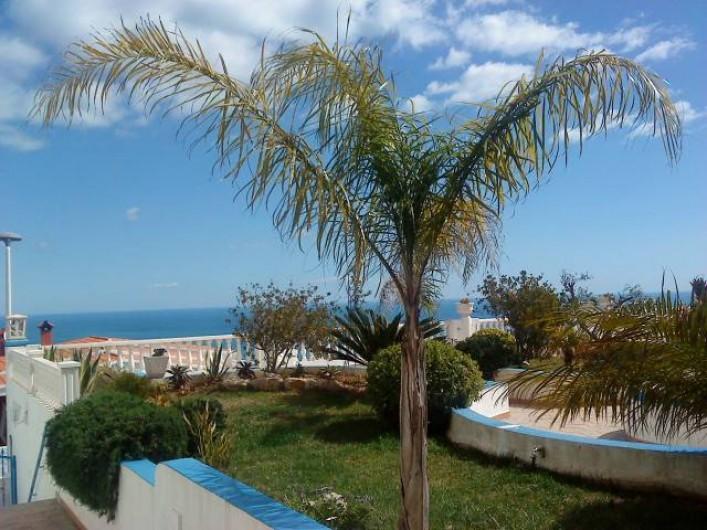 Location de vacances - Appartement à Peníscola - Jardin devant l'appartement